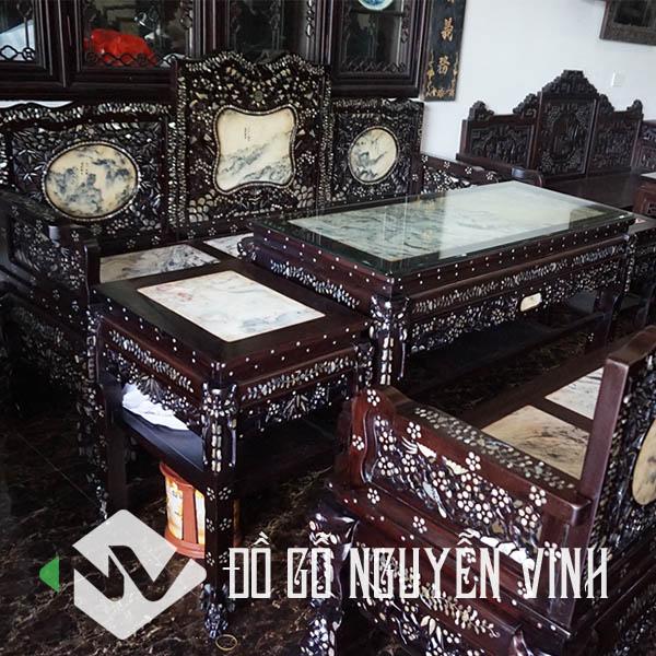 truong-ky-ngu-son-kham-oc-02-4
